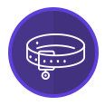 Purple Dog Collar Icon